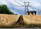 champ de blé du plateau Picard