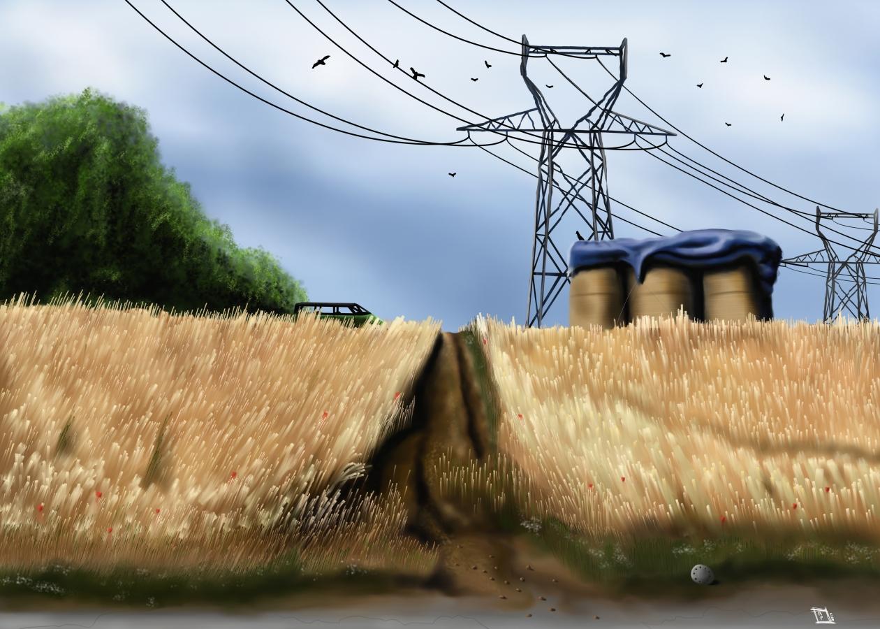 champ de blé site