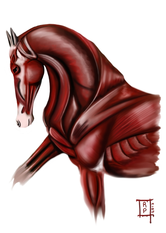 cheval de sang